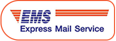 Express mail service logo