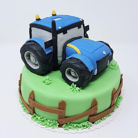 Speciality cake 4